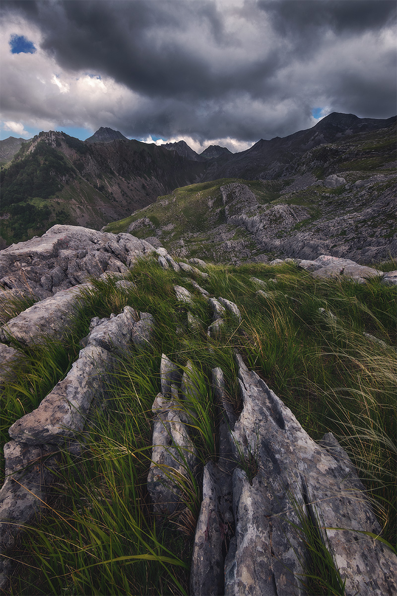 Rock and grass